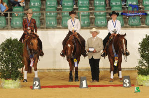 Manon Tamagni championne d'Europe youth de reining avec son cheval Dragon Heart ( 15 ans) Bravo Manon !